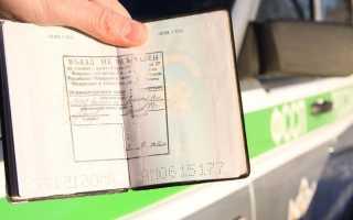 Как осуществляется проверка депортации