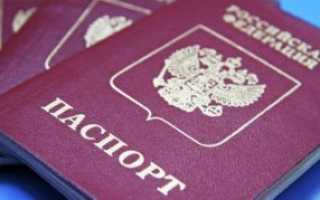 Как проверить, узнать дали ли гражданство РФ и сколько его ждать