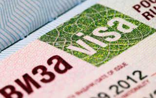 Учебная виза в Россию для иностранцев: когда нужна и как оформить