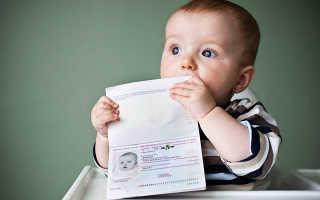 Как оформить загранпаспорт ребенку