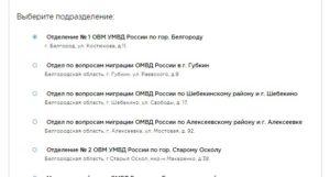 Подача документов на гражданство РФ: записываемся онлайн