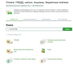 Все о госпошлине за вступление в гражданство России