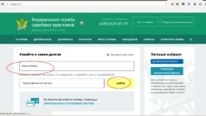 Как гражданин РФ может узнать задолженность по налогампо своим паспортным данным