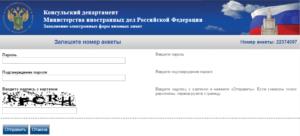 Бизнес-виза в Россию и ее оформление для иностранцев