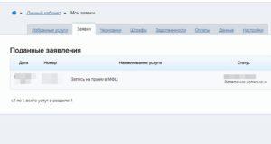 Как оформить паспорт гражданина РФ в многофункциональном центре