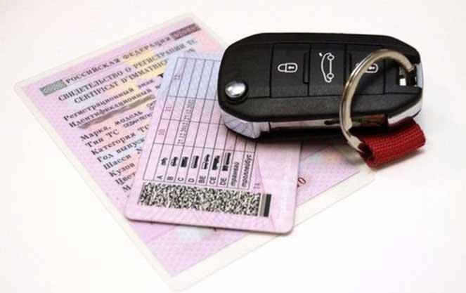 В каких странах действительны российские водительские права